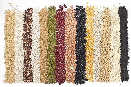 acne-grains-legumes-450x299