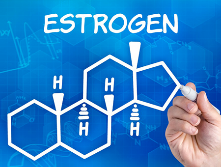 estrogen-graphic-450x340